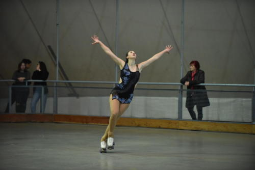 Carlotta Bucelli